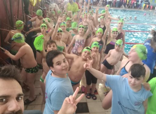 H Α.Κ.Α.Κ και ο Α.Σ.Κ Ολυμπιακός στους κολυμβητικούς αγώνες προαγωνιστικών κατηγοριών «Ακρισία 2019»